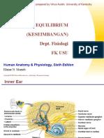 SSS II K7 FS Equilibrium