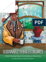 Sustainable Tribal Economies HTE