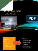 Micro_agua Clase