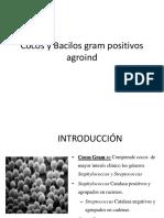 MICRO 2 Cocos y bacilos gram + agroind.pdf