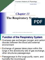 respiratoryppt.ppt