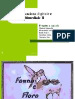 Comunicazione Digitale e Multimediale B