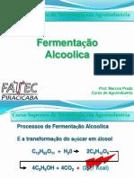 Aula 5- Fermentação alcoolica.pdf