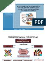 diversificacion currcular de la i.e.pdf