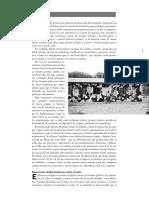 Grain 5340 Editorial