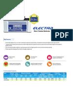 Luminous Electra Short Tubular Batteries