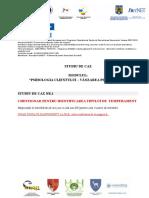 Chestionar Studiu Caz 1 Psihologia Clientului