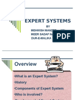 Expert_Systems