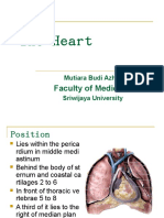 IT 26 - Heart & Pericardium - MBA