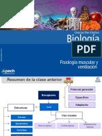 Clase 7 Fisiología Muscular y Ventilación 2015