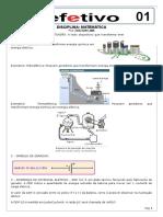 eletrodinamicao01.docx