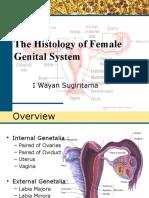 Female Genital System PSPD Semester Genap 2015