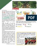 Bulletin 28