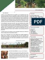 Bulletin 29