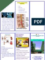 Leaflet Saraf Kejepit