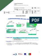 FT1 MVB3 Numeroscópio B