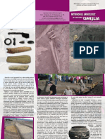 Patrimoniul arheologic al raionului Cimișlia. Documentare, cercetare, valorificare.