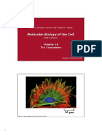 Alberts Molecular Biology of the Cell_CH16_cytoskeleton