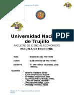 Informe Final Ingenieria Del Proyecto