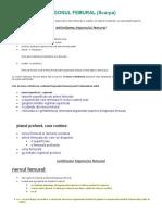 documents.tips_trigonul-femural-scarpa.doc