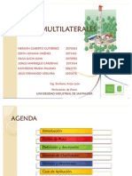 Pozos Multilaterales
