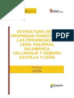 1.Propiedad Forestal Leon