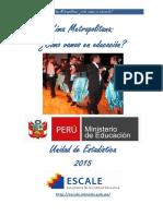 Perfil Lima Metropolitana