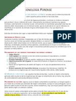 Medicina Legal. UNIDAD V - PARTE 2 (LESIONOLOGÍA FORENSE)
