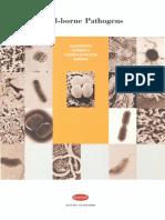 6 Food Borne Pathogens Staphylococcus Aureus