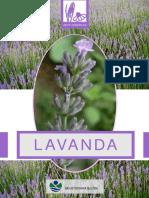 lavanda_web_SS_.pdf