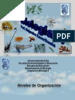 2.-Niveles de Organización y Ciclos de Vida