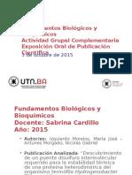 FByB - Paper 03-10-2015