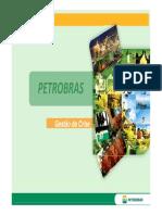 2011 05 27 PETROBRAS Gestão de crise.pdf