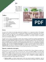 Ciclo Del Nitrógeno - Wikipedia, La Enciclopedia Libre