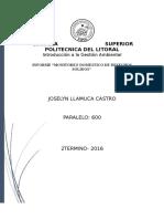 Informe de Monitoreo de desechos_JoselynLlamuca.docx