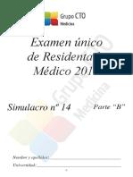 Simulacro 14b Peru