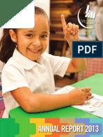 Annual Report 2013mp