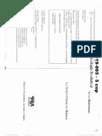 01019005 BLEICHMAR - Límites y Excesos Del Concepto de Subjetividad en Psicoanálisis