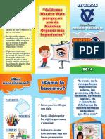 Triptico sentido de la vista-CURVAS.pdf