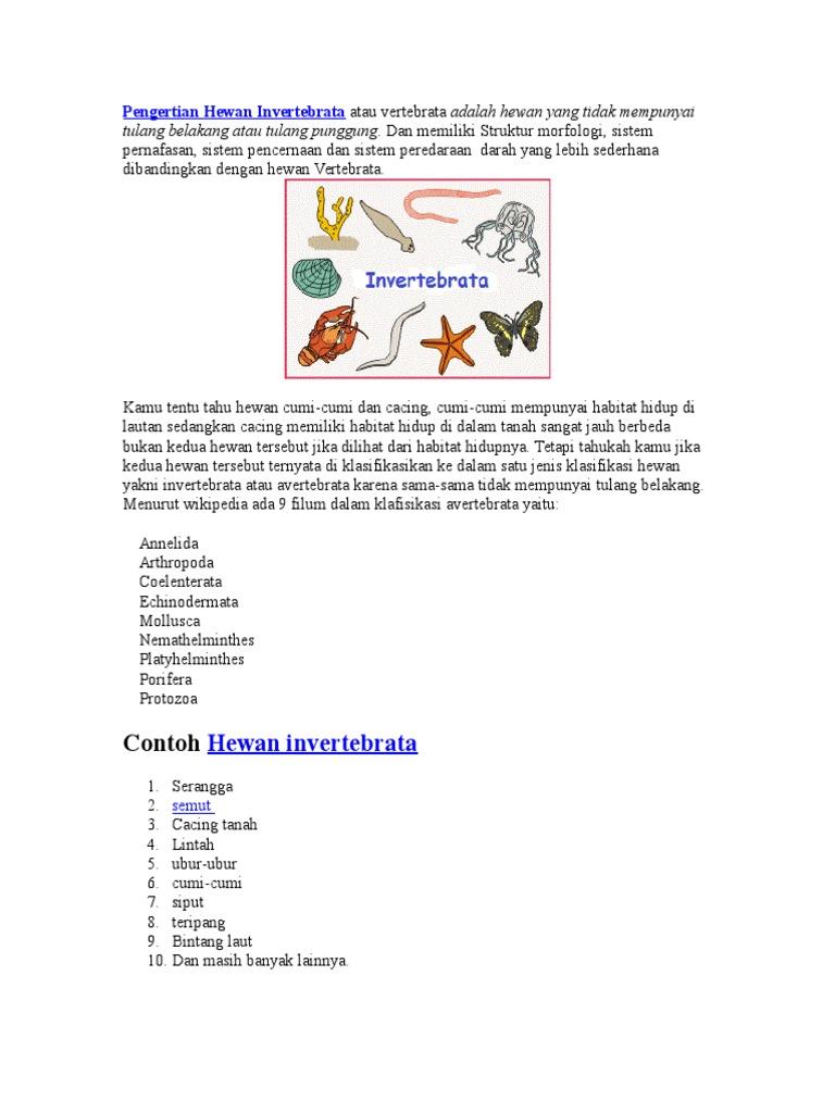 Pengertian Hewan Invertebrata Atau Vertebrata Adalah Hewan Yang