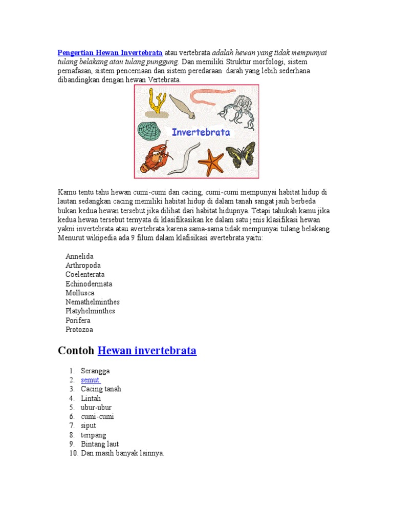 520 Koleksi Gambar Tulang Hewan Invertebrata HD Terbaru