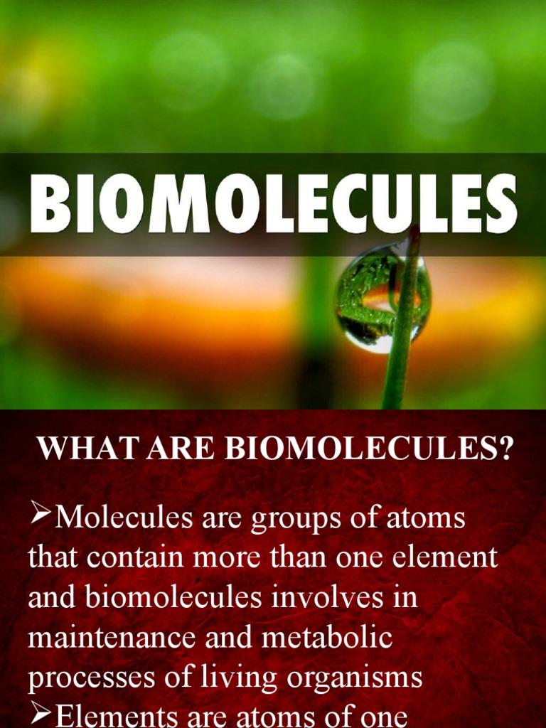 what are biomolecules