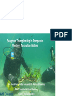 24. Seagrass Rehabilitation in Temperate Western Australian Waters Anderson