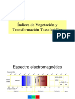 9_Indices_de_Vegetacion_1CH[1].pdf