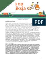 adviesrapport voor betrokkenen - breda op een riksja