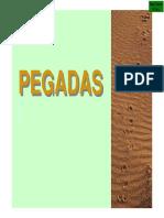 Guia de Pegadas mamiferos