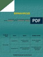 birnaviroze