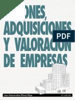 Fusiones, Adquisiciones y Valoración de Empresas - Juan Mascarenas