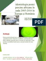 Epidemiologia Pestei Porcine Africane În Perioada 2005 2016 În (1)