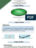 Presentacion Capa Límite.pptx